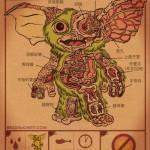 Mogwai Anatomy
